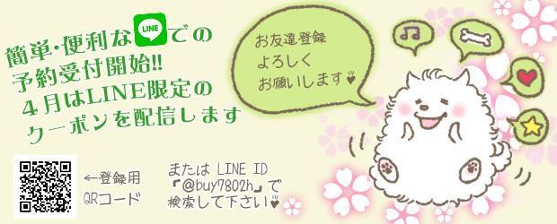 船橋市 犬のトリミングサロン line予約限定クーポンキャンペーン